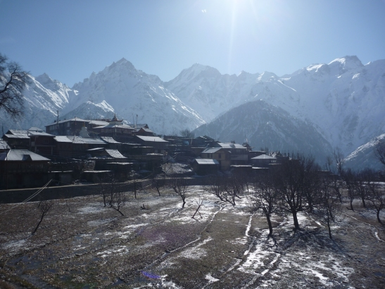 Apple Orchards, Kalpa