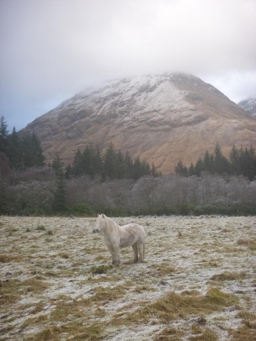 White Horse, Glen Etive