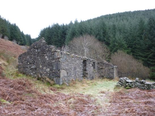 Ruins, Eskdalemuir Forest